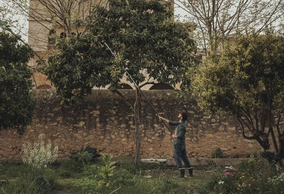 Fiskars PowerGear X Tree pruner