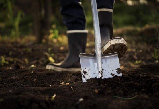 Ültesse el növényeit még egyszerűbben!
