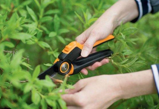 Tegye felkészülté kertjét a legjobb eszközökkel!